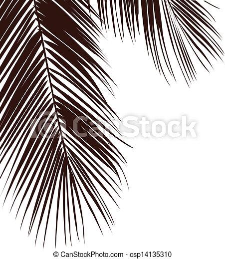 feuilles, arbres - csp14135310