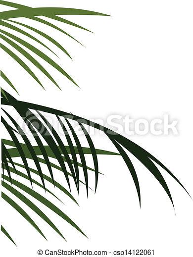 feuilles, arbres - csp14122061