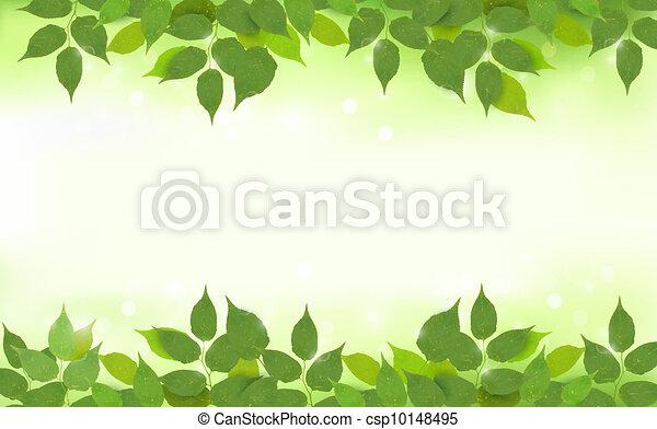 feuilles, arrière-plan vert, nature - csp10148495