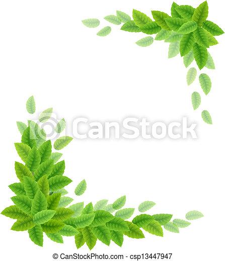 feuilles, arrière-plan vert - csp13447947
