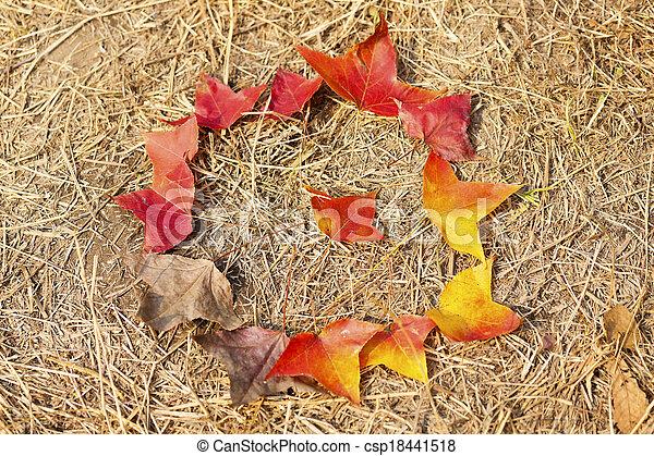 feuilles automne, baissé, cycle vie - csp18441518
