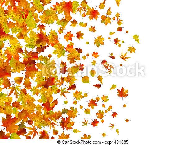 feuilles automne, baissé, fond - csp4431085