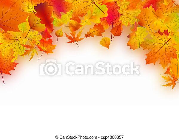 feuilles automne, baissé, fond - csp4800357