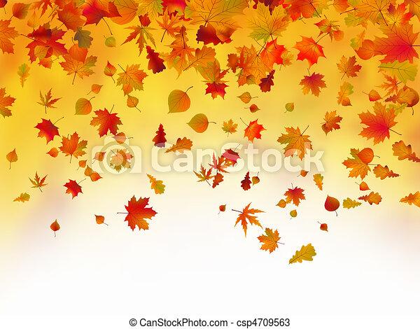 feuilles automne, baissé, fond - csp4709563