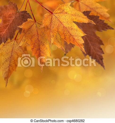 feuilles automne, foyer peu profond, fond - csp4680282