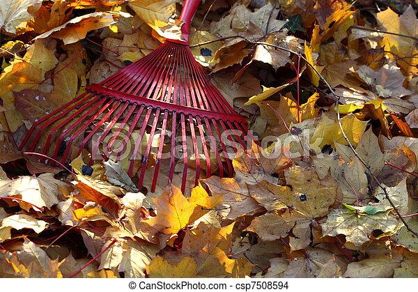 feuilles, automne, râteau - csp7508594