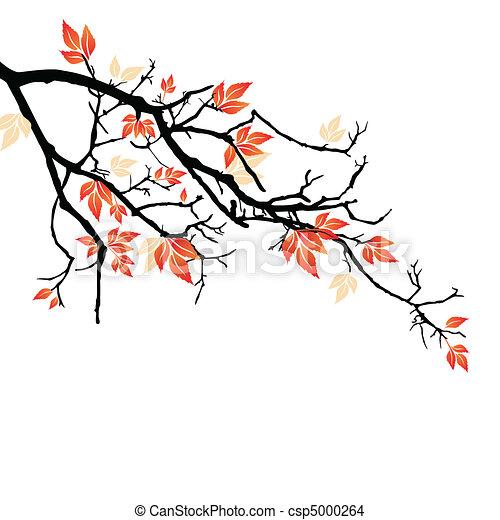 feuilles automne - csp5000264