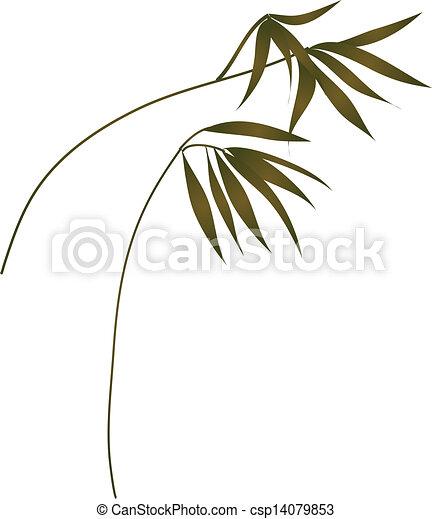 feuilles - csp14079853