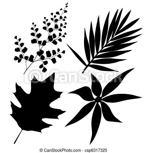 feuilles - csp6317325