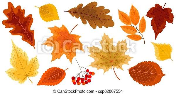 feuilles, ensemble, or, automne - csp82807554