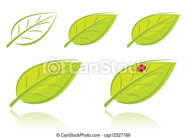 feuilles, ensemble, vecteur, vert - csp12327169