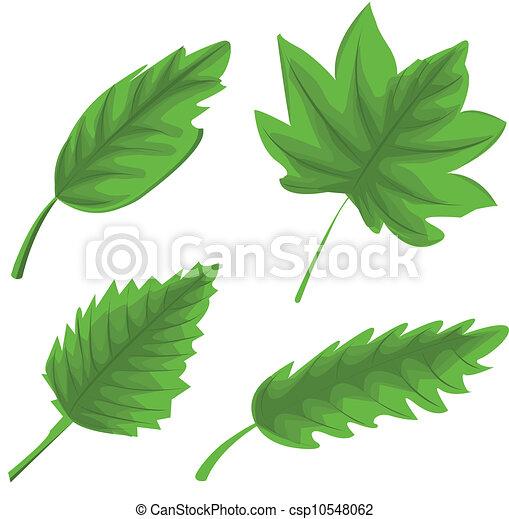 feuilles, ensemble, vert - csp10548062
