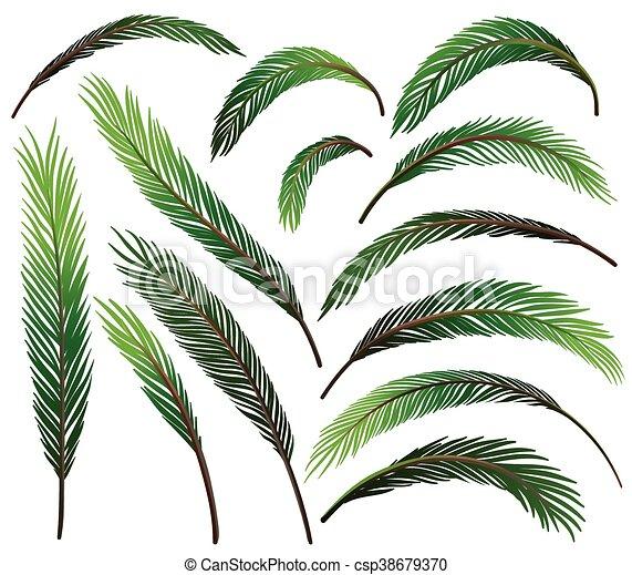 feuilles, ensemble, vert - csp38679370