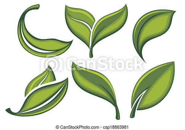 feuilles, ensemble, vert - csp18863981