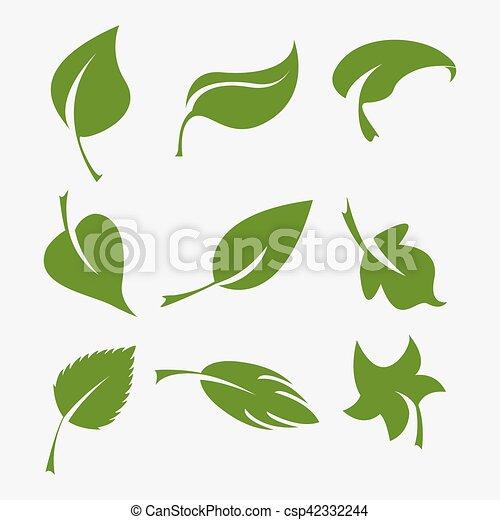 feuilles, ensemble, vert - csp42332244