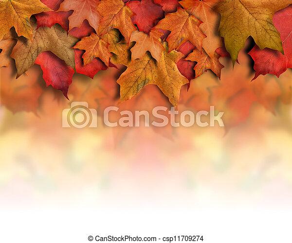 feuilles, fond, automne, frontière orange, rouges - csp11709274