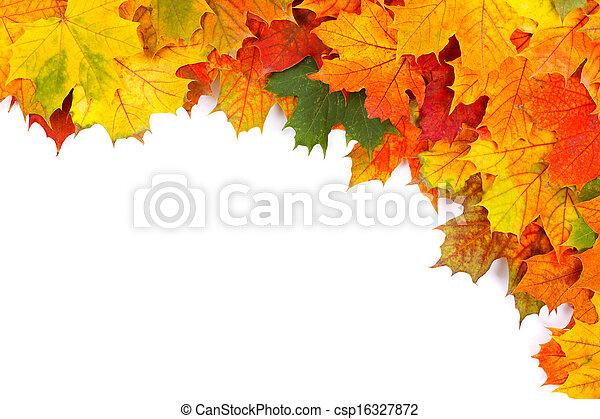 feuilles, frontière, automne - csp16327872