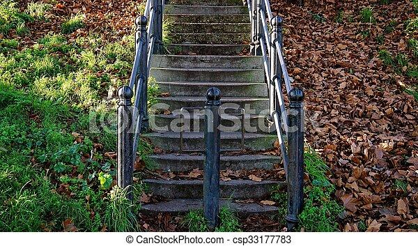 feuilles, grille, rustique, fer, automne, étapes - csp33177783