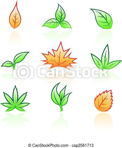 feuilles, lustré - csp2561713