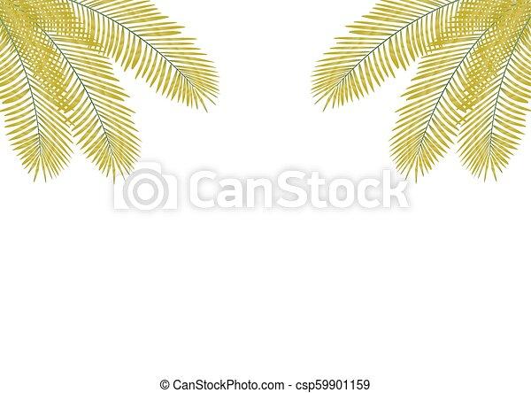 feuilles, paume - csp59901159