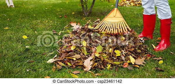 feuilles, râteau, automne - csp23461142
