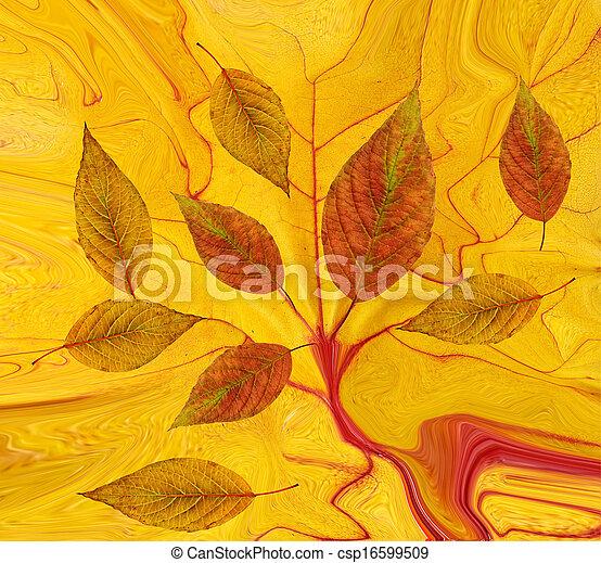 feuilles, résumé, fond, automne - csp16599509