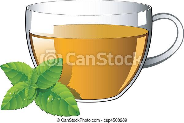 feuilles thé, menthe, verre, tasse - csp4508289