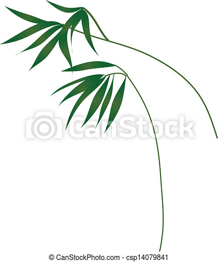 feuilles - csp14079841