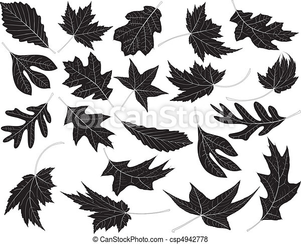 feuilles - csp4942778