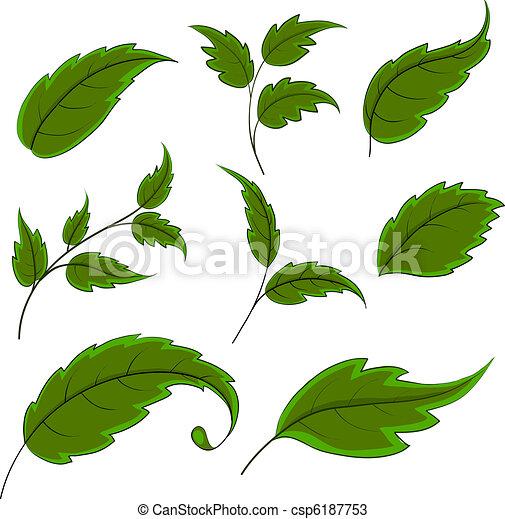 feuilles - csp6187753