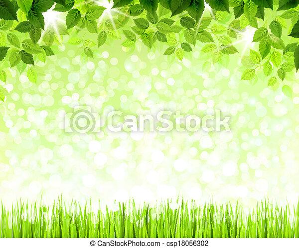 feuilles, vert - csp18056302
