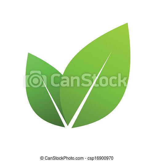 feuilles, vert - csp16900970