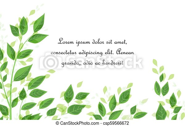 feuilles vertes, arbre - csp59566672