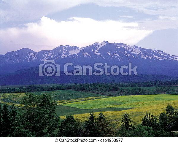Field Landscape - csp4953977