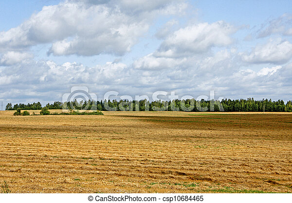 Field landscape - csp10684465