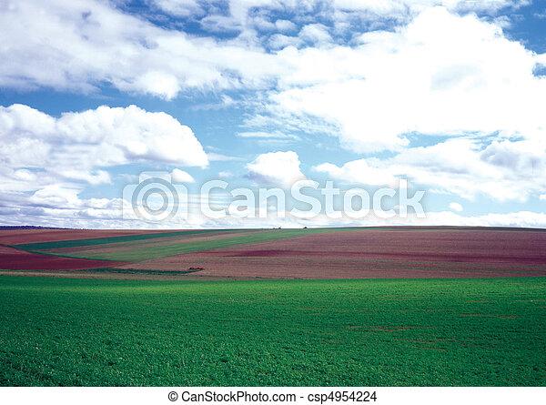 Field Landscape - csp4954224