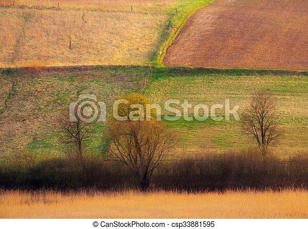 Field landscape - csp33881595