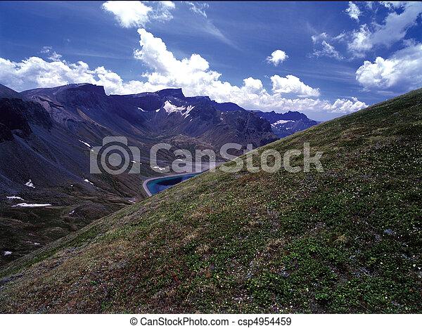 Field Landscape - csp4954459