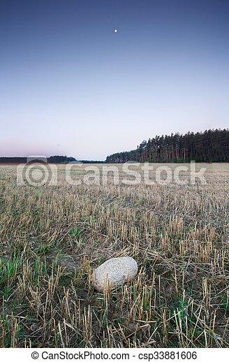 Field landscape - csp33881606