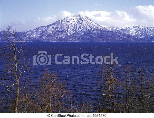 Field Landscape - csp4954570