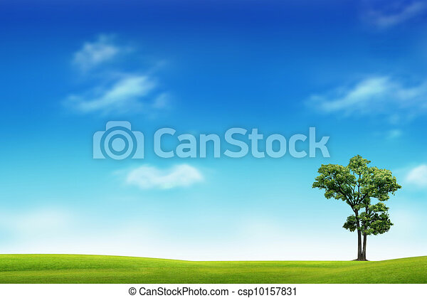 Field with green grass and tree - csp10157831
