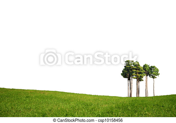 Field with green grass and tree - csp10158456