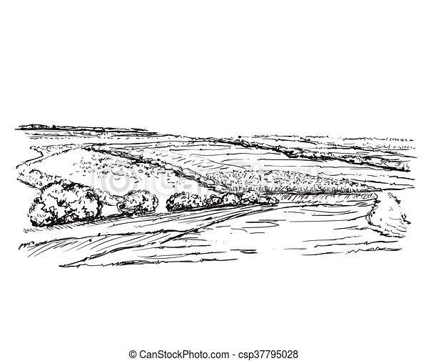 fields., paesaggio - csp37795028