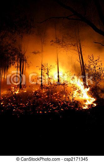 Fiery Night - csp2171345