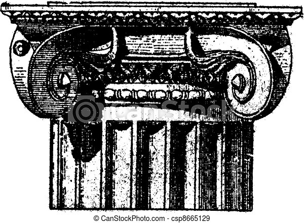 Fig. 3. Ionic (Pompeii) with angle volutes, vintage engraving. - csp8665129