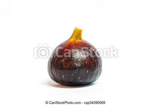 Fig--Black Genoa Gene, Ficus Fruit - csp34390069