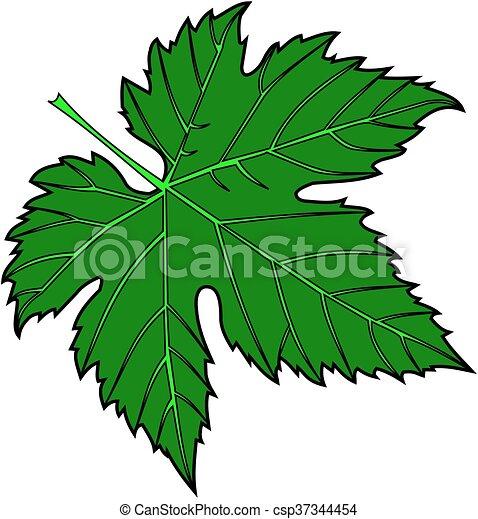 fig leaf - csp37344454