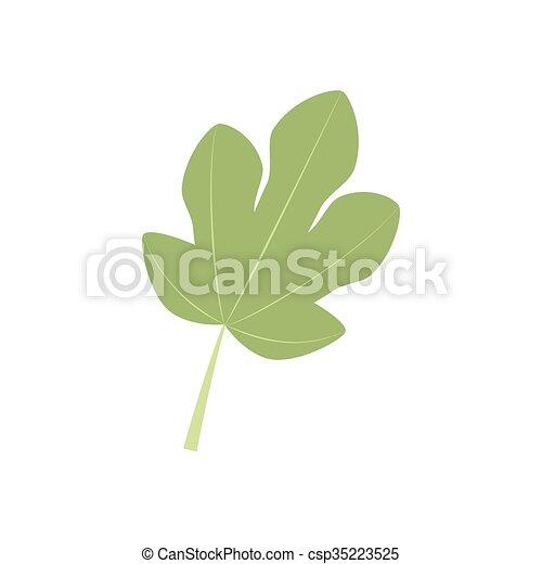 Fig Leaf Icon - csp35223525