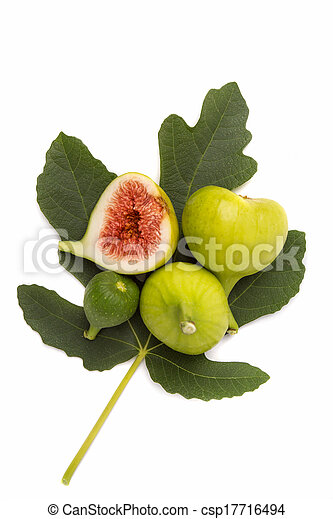 Figs isolated - csp17716494