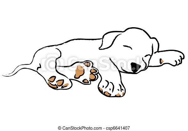 filhote cachorro dormir mão dormir fundo branca filhote